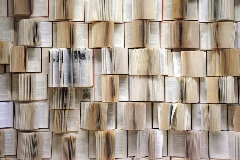 book-wall-1151405_1280.jpg