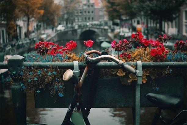 Amsterdam, kuva Nick Scheerbarton.jpg