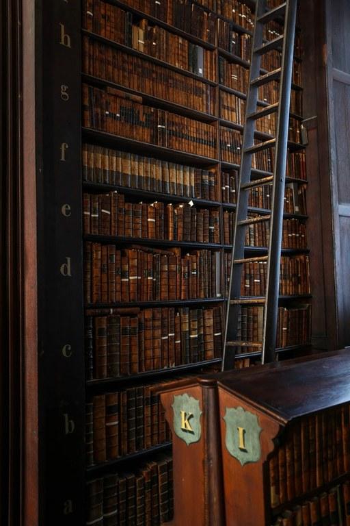 english library alexandre godreau.jpg